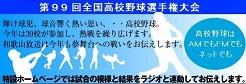 高校野球選手権(サイド)